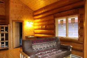 aqua log cabin interior couch
